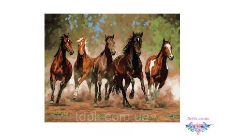 """Картины по номерам 40 х 50 см.\""""Лошади в каньоне\"""""""