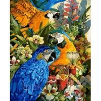 Картины по номерам 40 х 50 см. Тропические попугаи